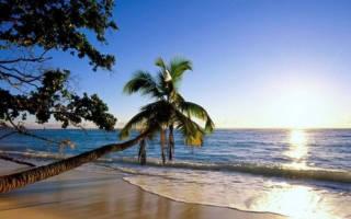 Отзыв об Остров на НТВ